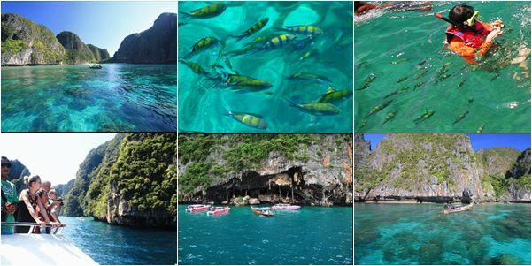 FULL DAY PHI PHI ISLAND BY FERRY BOAT (Location;  Krabi)